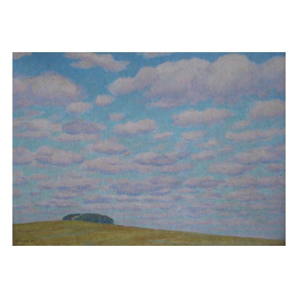 Premysl Netopyl, Spring sky
