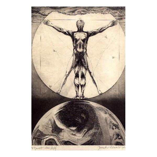 Genesis, sixth day